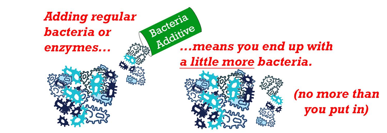 bacteria septic tank additive